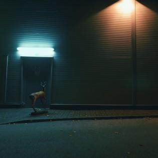 Éjszakai neonfények közt bolyongó hullamerev őzike, avagy Horváth Réka álomvilág alteregója