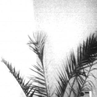 Ólom lom – részletek Rédling Hanna fotóprojektjéből