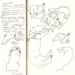 Pages: A mindennapok finom lenyomata Bogó Krisztina kiterjesztett agyában