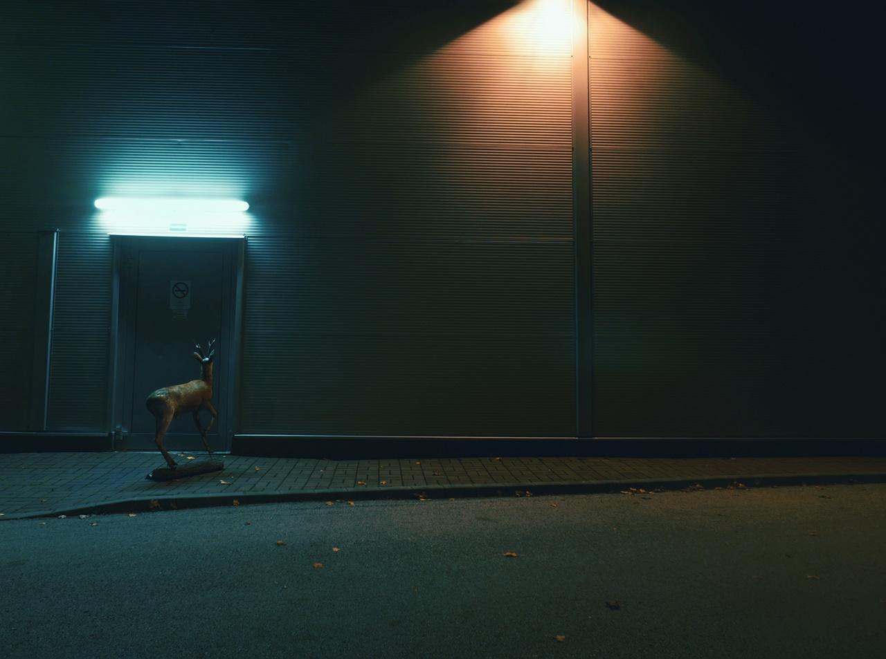 Horváth Réka | Határvalóság csoportos kiállítás | LAOS | © Moholy-Nagy Művészeti Egyetem