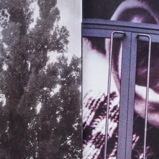 Ukrajna friss szele – Beszélgetés Matolják Adri fotóiról